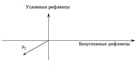 Классификация отдельной особи по пассионарно-аттрактивному принципу — пасс-вектор