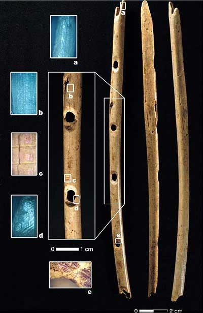 Флейты о 40 тысячах годах, http://elementy.ru/news?newsid=431111