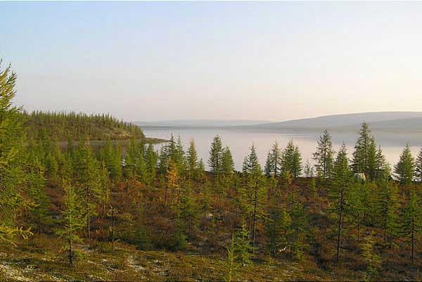 Виталий Сергеев. Озеро Виви, http://www.panoramio.com/photo/1189298