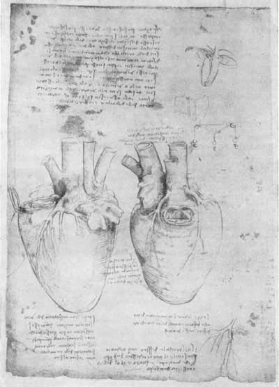 Леонардо да Винчи, рис. 23 в [16.52]