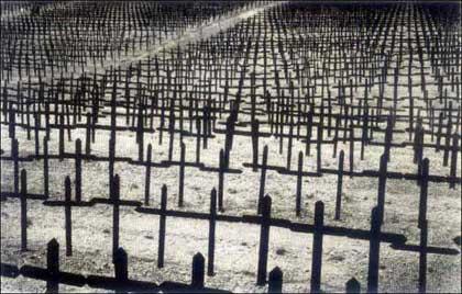 Первая мировая война, лики смерти 3